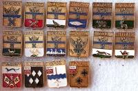 Комплект значков «Гербы городов Оренбургской губерния» (16 штук) (Оренбург)