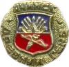 Ачинск (древний герб (пуговицы))