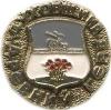 Духовщина (древний герб (пуговицы))