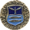 Хвалынск (древний герб (пуговицы))