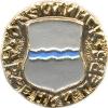 Олекминск (древний герб (пуговицы))